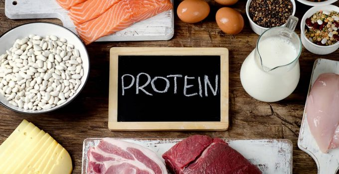 What is a Good High Protein Diet Plan for Weight Loss?